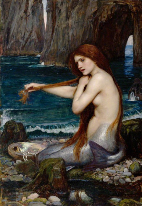 How The Mermaid Got Her Tail